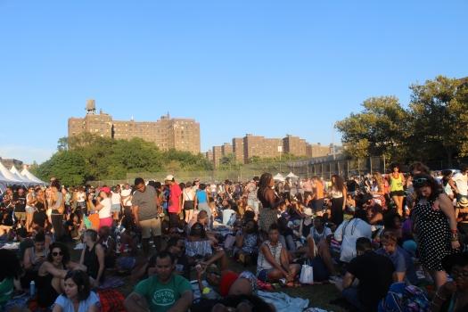 Afropunk Fest 2015 travelbyky.com
